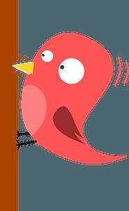 Pink Woodpecker clipart