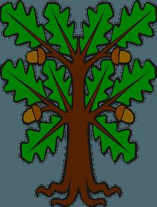 Stylised Oak clipart