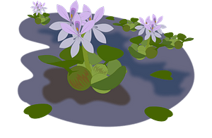 Green Plants and Purple Flowers in a Pond clipart