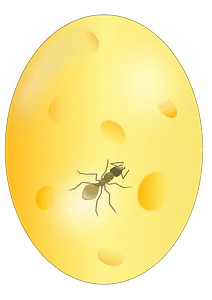 Ant in Amber clipart