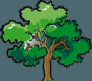 Colored Oak Tree clipart