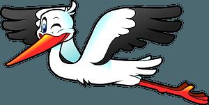 Stork Flying clipart