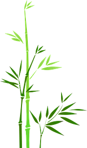 Green Bamboo clipart