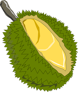 Durian,Thai Fruit clipart