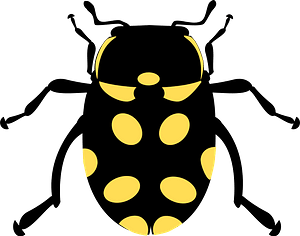 Black Beetle with Yellow Spots clipart