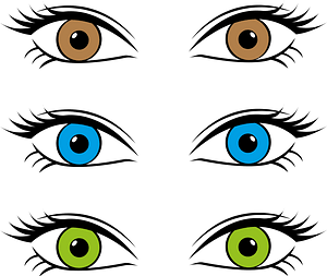 Three Sets of Eyes - Brown, Blue, Green clipart