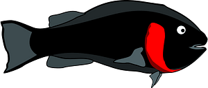 Black/Red Fish clipart