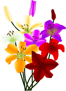 Bouquet of Colorful Lilies clipart