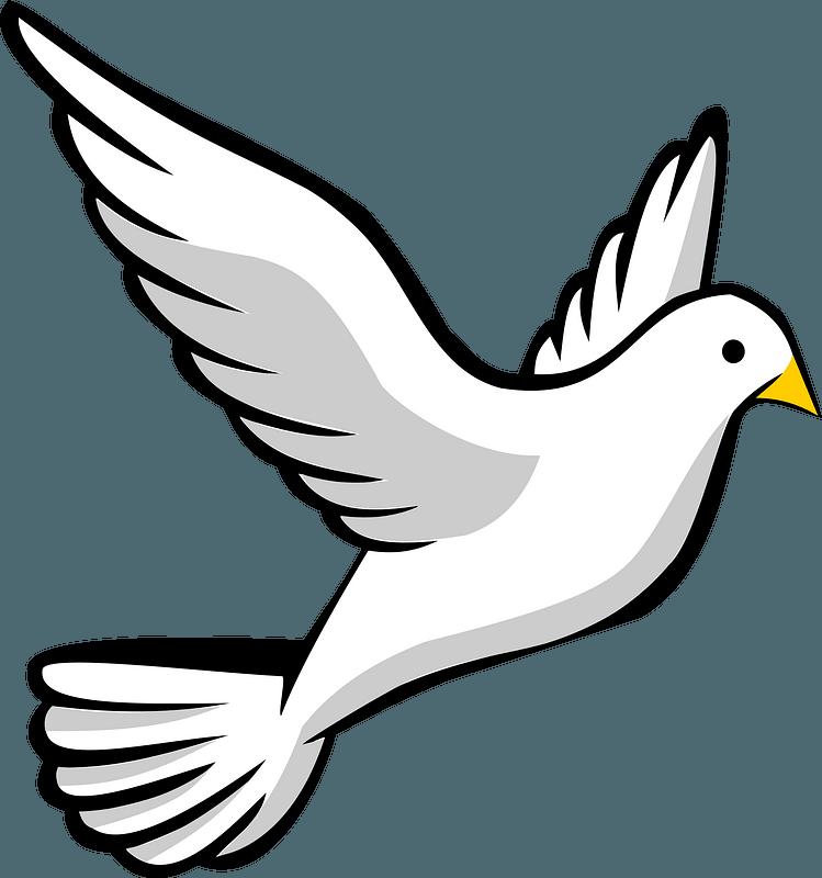 Flying White Dove clipart