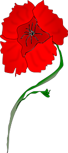 Red Poppy clipart