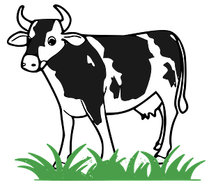 Black and White Cow in Green Grass clipart