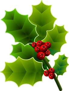 Holly Branch with Berries clipart
