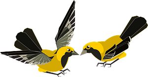 Yellow Finches clipart