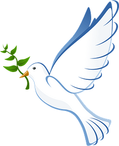 White Dove with a Branch in it's Beak 클립 아트