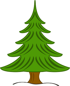 Evergreen Tree clipart