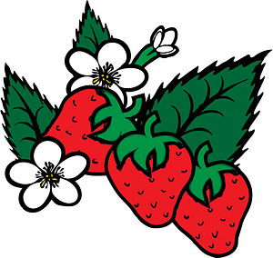 Strawberries Plants with White Flowers and Leaves clipart