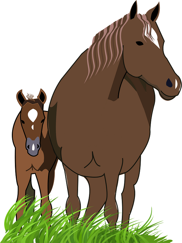 mother horse and baby - Clipart World