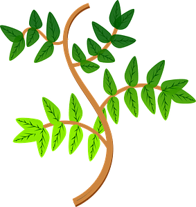 Leaves and Branches clipart