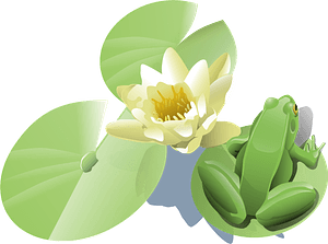 Leland Mcinnes Frog on a Lily Pad clipart