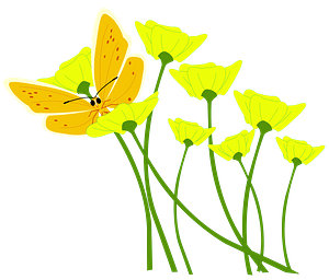 Yellow Butterfly Resting on Wildflowers clipart