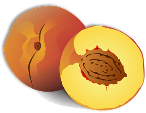 Whole and Half Peaches clipart