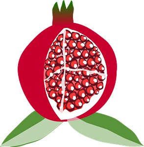 Pomegranate Fruit clipart