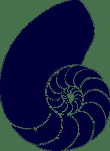 Shell clipart