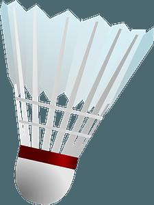 Badminton Shuttlecock clipart