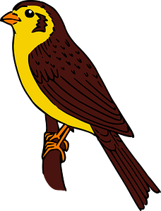 Brown and Yellow Bird Perched on a Branch clipart