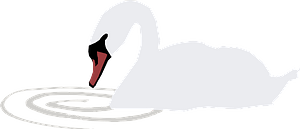 Swan with Ripple in the Water clipart
