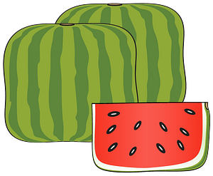 Watermelon Cube and Slice clipart