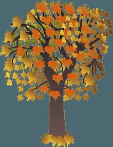 Autumn maple tree clipart