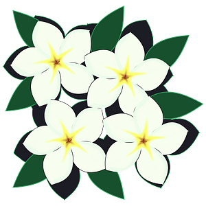 White flowers clipart
