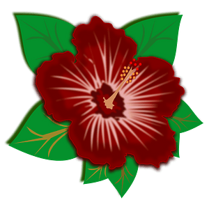 Deep red hibiscus flower clipart
