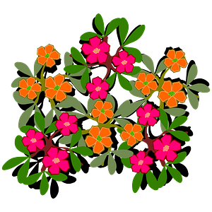 Orange and pink eleven-hour flowers with leaves clipart