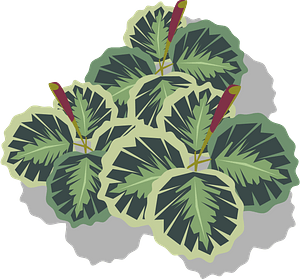 Foliage clipart