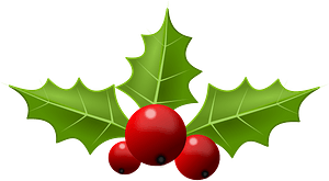 Holly berries and leaves clipart