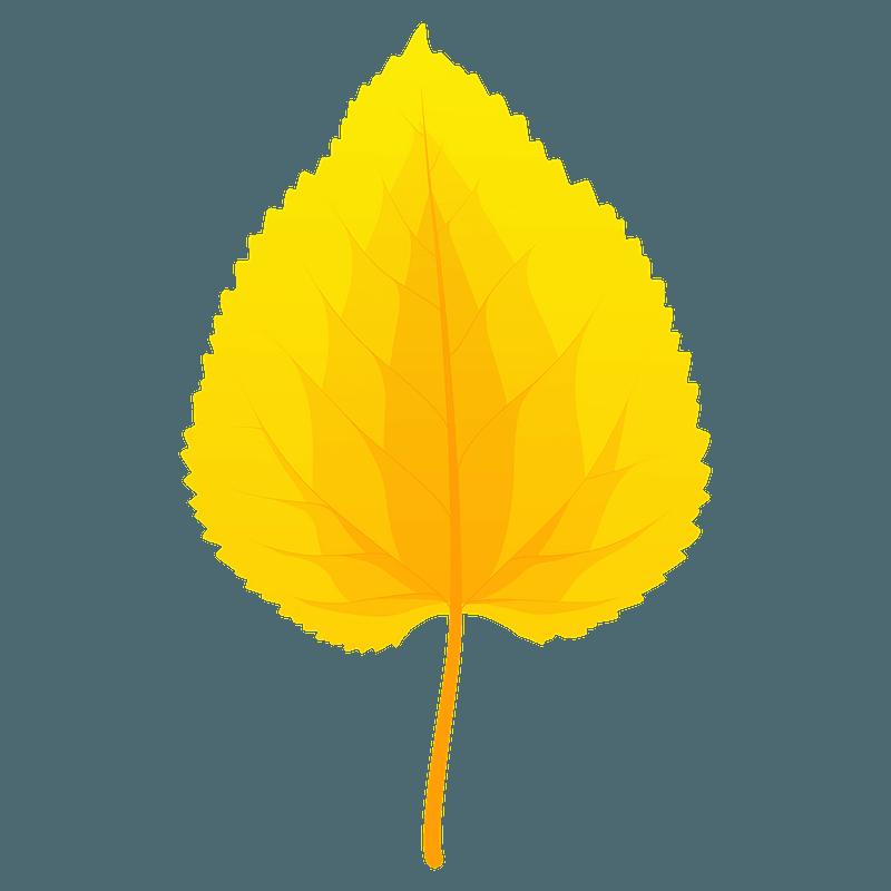 Black mulberry autumn leaf clipart