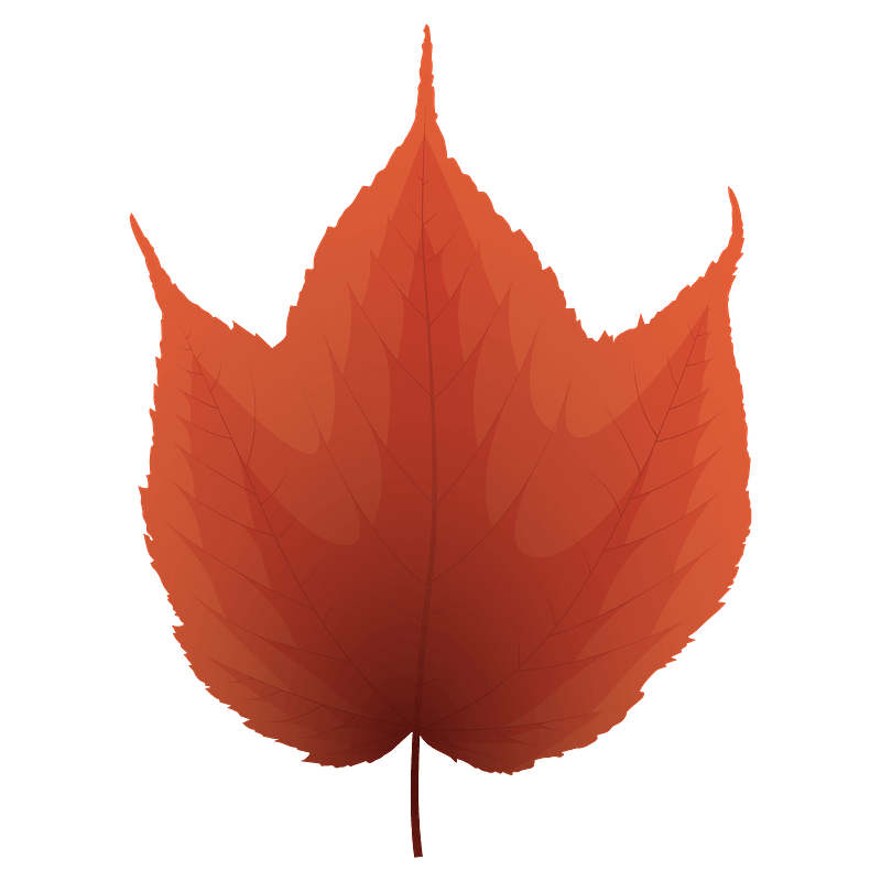 Free Maple Leaf Cliparts, Download Free Clip Art, Free Clip Art on Clipart  Library