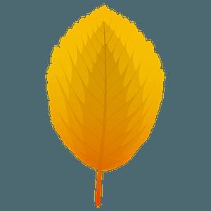 Whitebeam autumn leaf clipart
