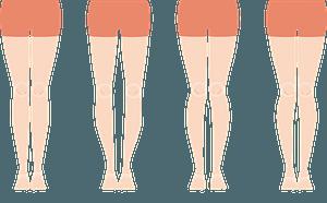 Legs clipart