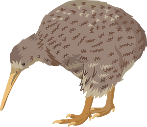 Great spotted kiwi clipart