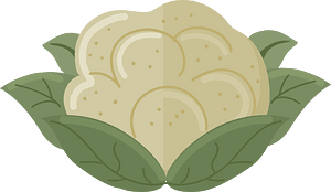 Cauliflower clipart