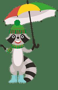 Racoon and umbrella 클립 아트
