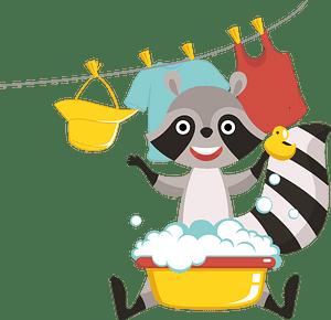 Racoon washing clipart