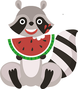 Racoon with watermelon clipart