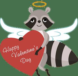 Saint valentine racoon cupid clipart