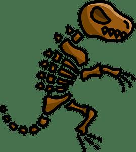 Dinosaur fossil clipart