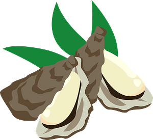 Oyster Food clipart