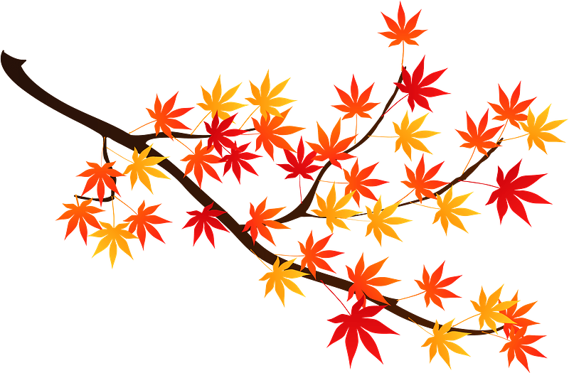 Maple leaf clip art clipartion com | Clip art, Clip art borders, Art